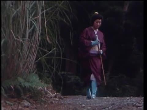 Hattori Hanzo: Kage no Gundan