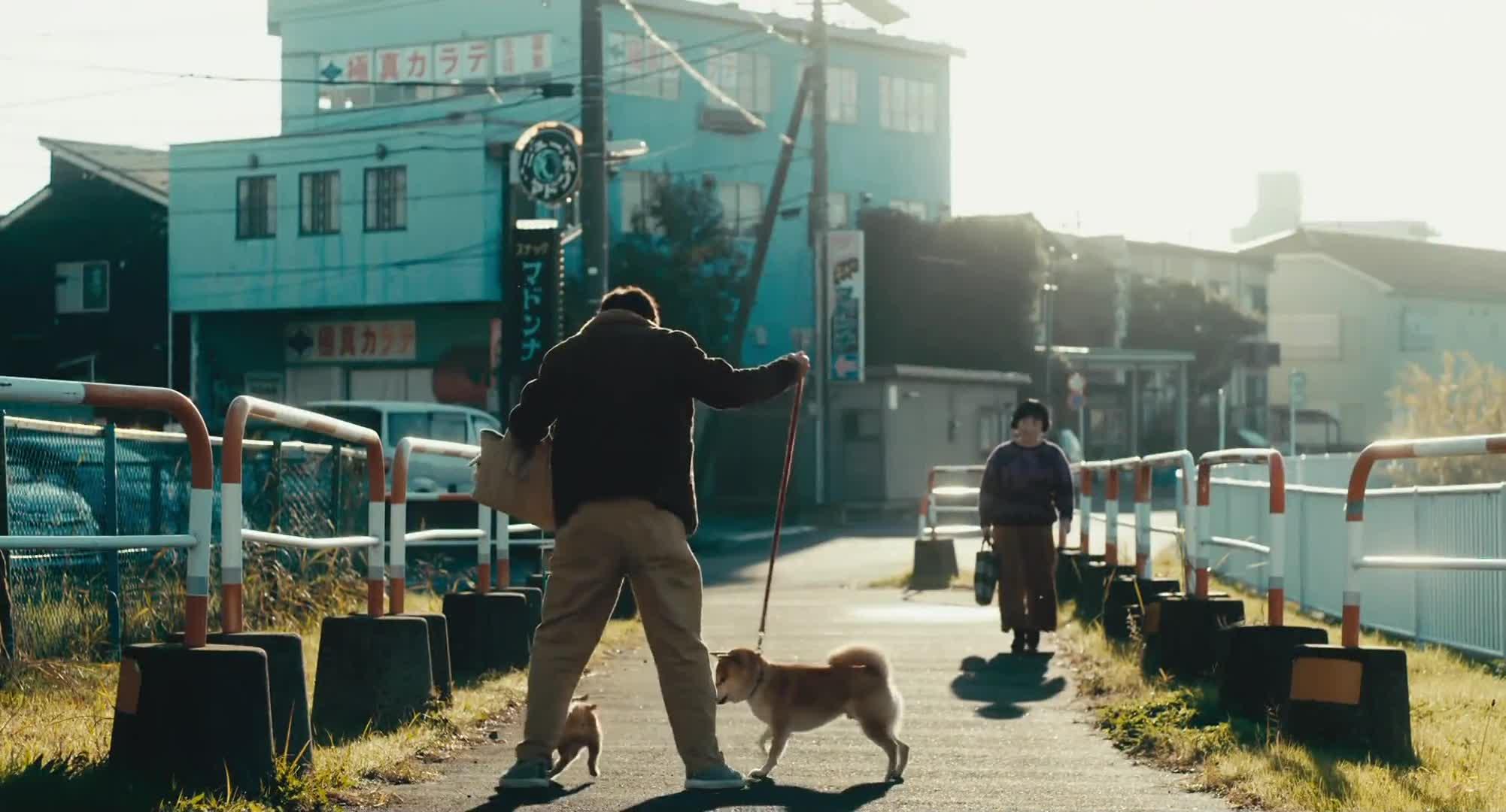 Shiba Park (2019)