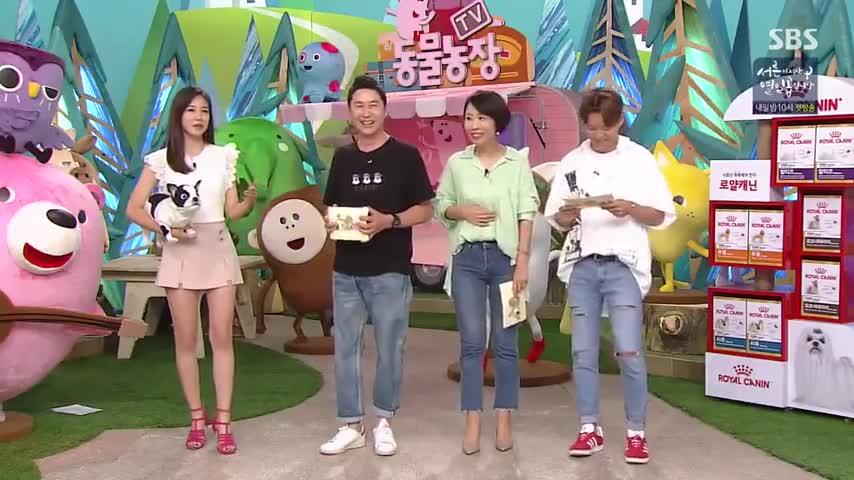 Tv Animal Farm
