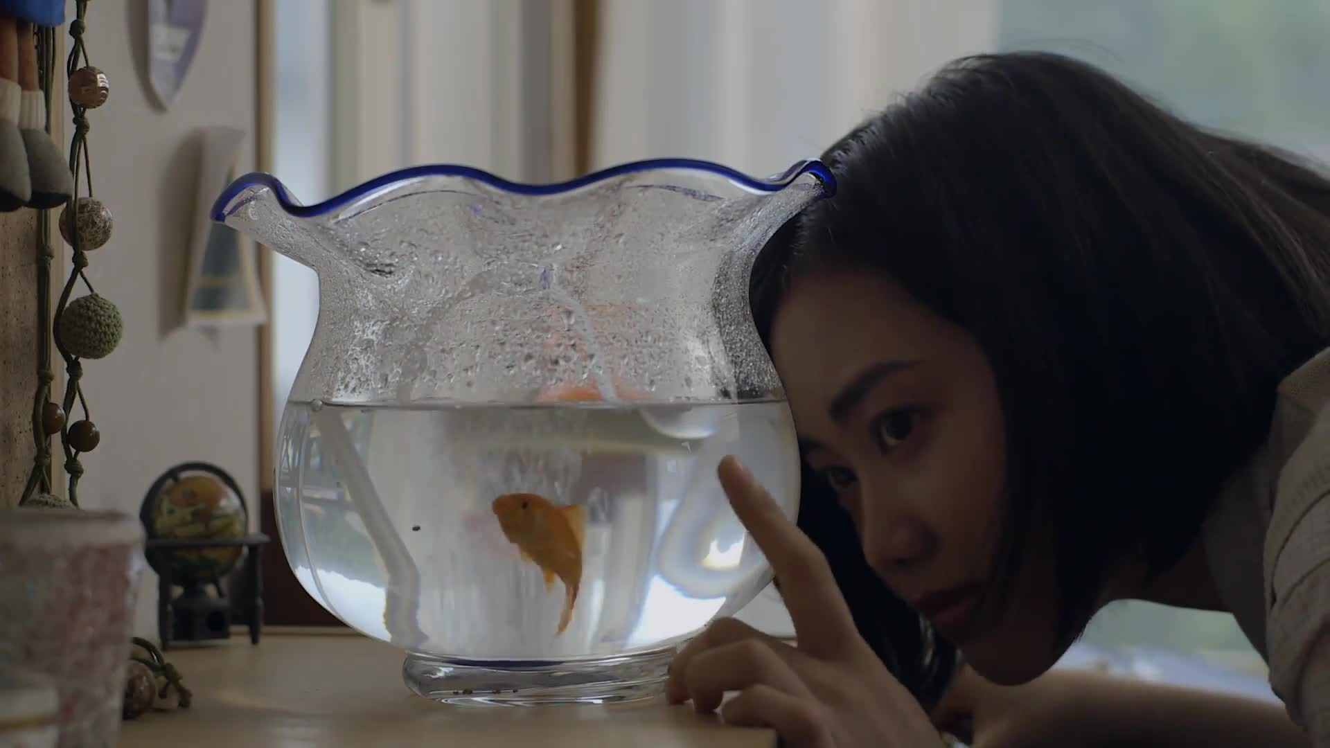 The Goldfish: Dreaming of the Sea (2021)